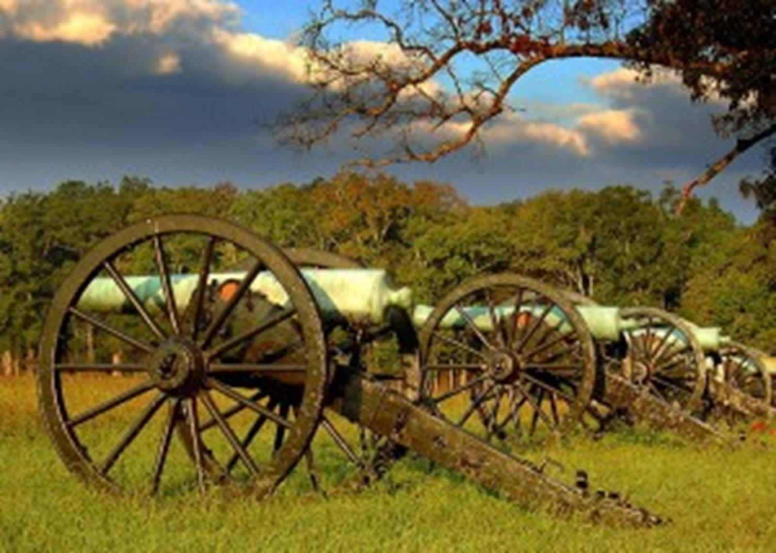 Cannon Row in Chickamauga and Chattanooga National Military Park