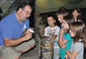 Student Groups Love Adventure Aquarium