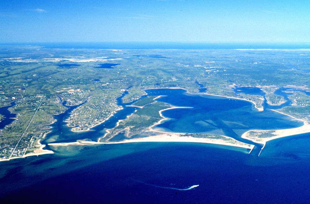 Top 5 Educational Field Trips to Beaches in the Northeast