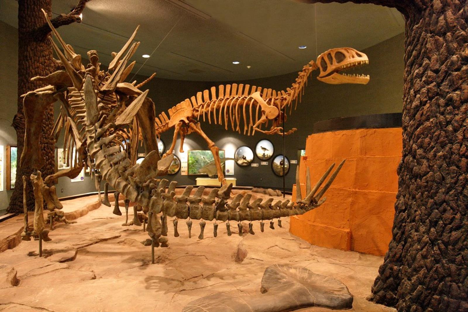 Dinosaurs- resized for web