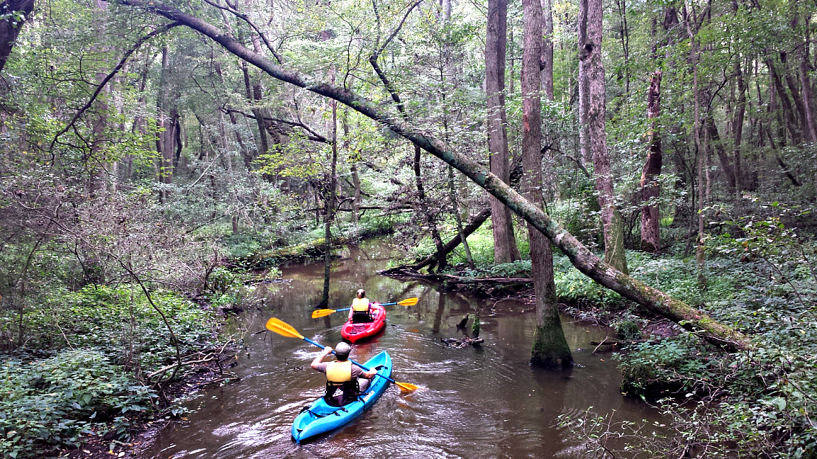 12 Trips for Student Groups in Delaware