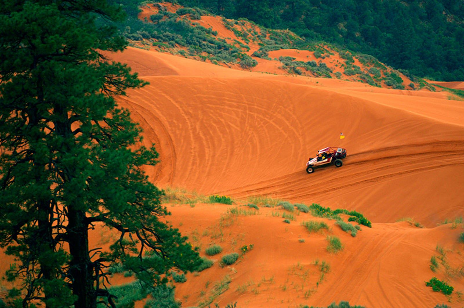 Riding an ATV over the Coral Pink Sand Dunes. Credit: visitsouthernutah.com
