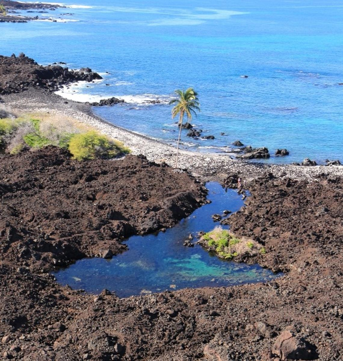 Cove at Kona Beach. Credit: Big Island Visitors Bureau (BIVB)/Kirk Lee Aedes Island.