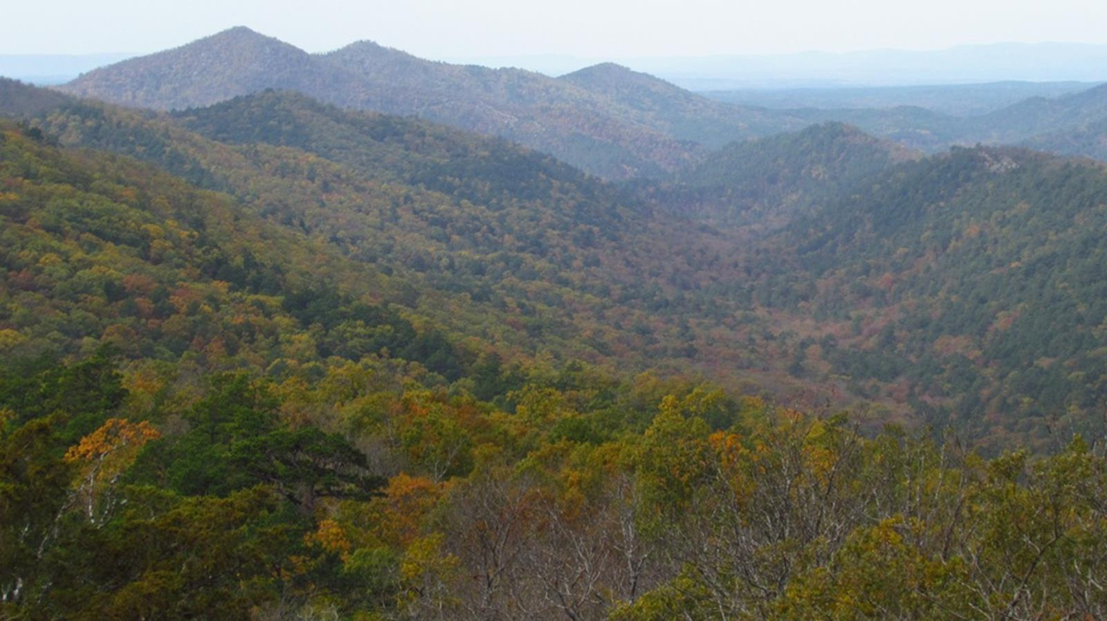 Ouachita Mountains. Credit: Tammo2011 at en.wikipedia