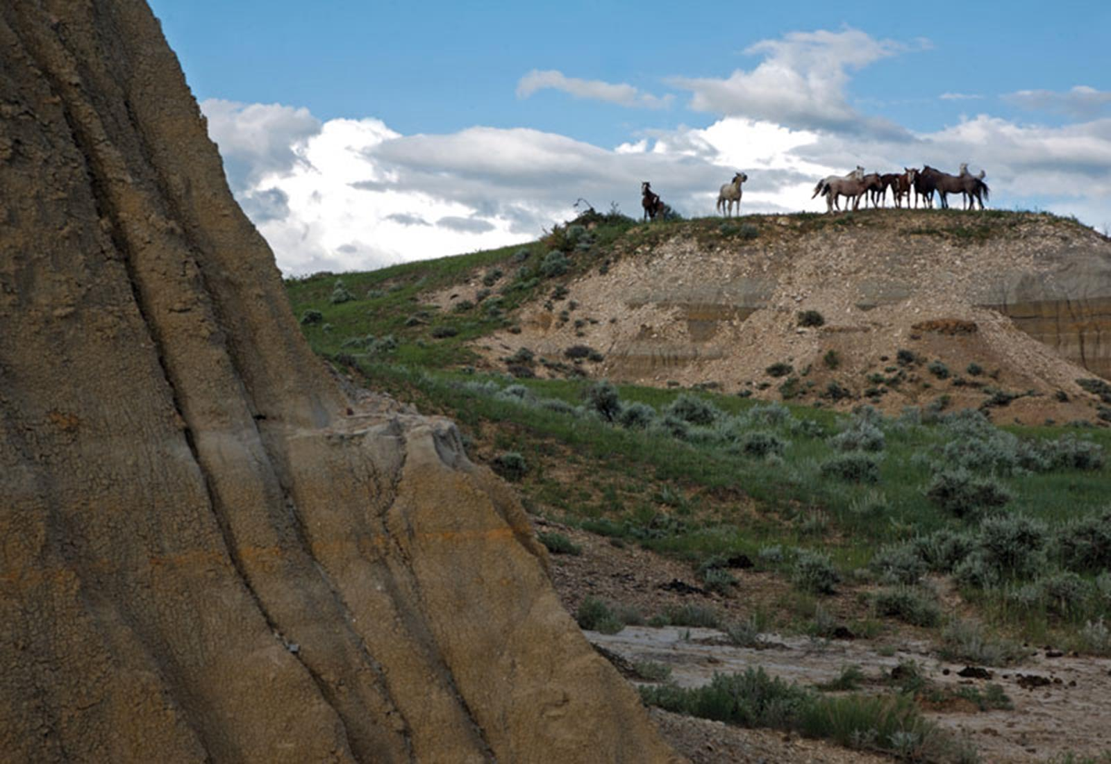 Theodore Roosevelt National Park, Badlands. Credit: ND Parks & Rec.