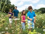 Family walking through a garden