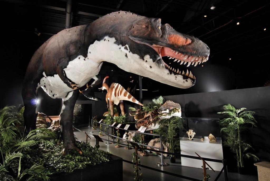 Dinosaur-Museum-1