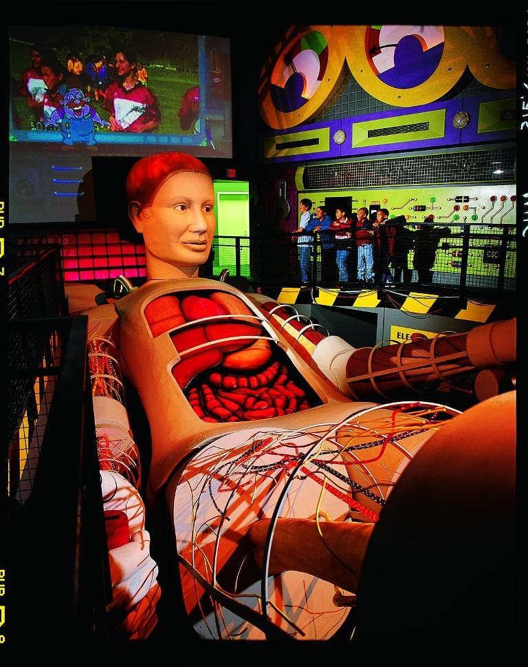 The Science Center's BodyWorks exhibit features Tess, a 50-foot anatomically correct transparent human model or body simulator. Animatronics, animation and special effects bring the BodyWorks show to life. It is here that visitors learn how organs work together to keep the body in balance or in homeostasis. California Science Center.
