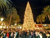 Chrismas tree lights