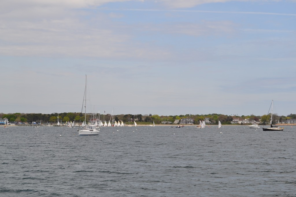 Seeing a sailboat regatta on the Hyannis Harbor Cruise. Credit: Lauren Reiniger