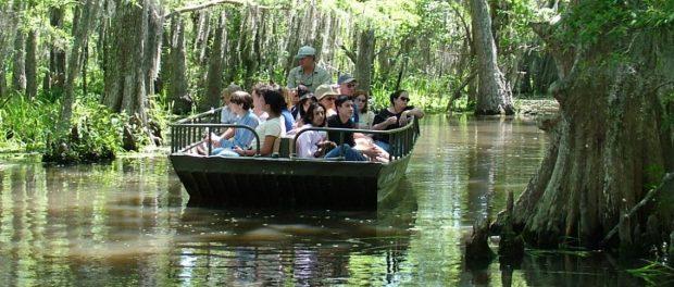 Tour-Swamp Tour