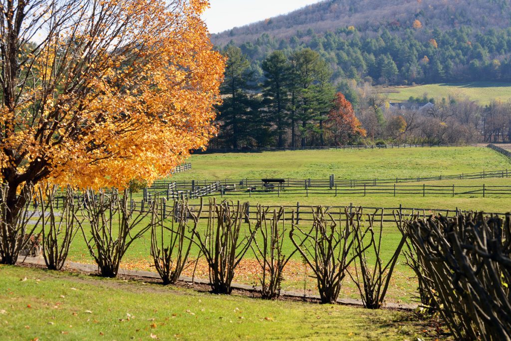 NPS and the Billings Farm & Museum / The Woodstock Foundation explores the integration of conservation, heritage, and human values, while advancing programs, projects, and collaborations for the benefit of the general public within the State of Vermont and nationally