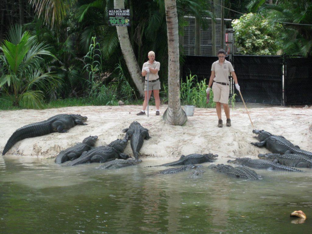 Naples Zoo 2