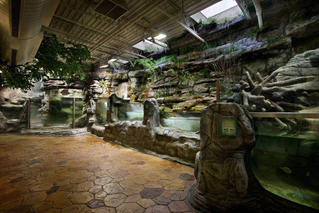 Oklahoma Aquarium - Hayes Ozark Stream
