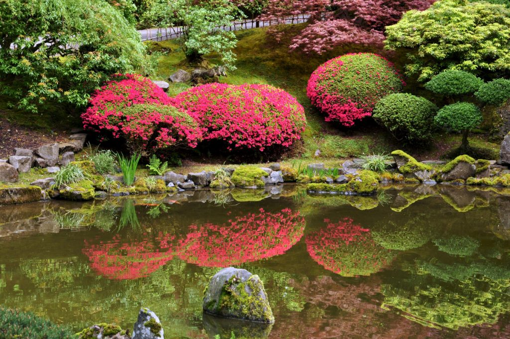Portland Japanese Gardens - Perfect Reflection by Ryan Stavely