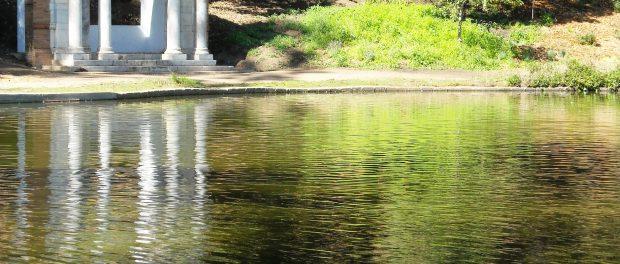 https://en.wikipedia.org/wiki/Golden_Gate_Park