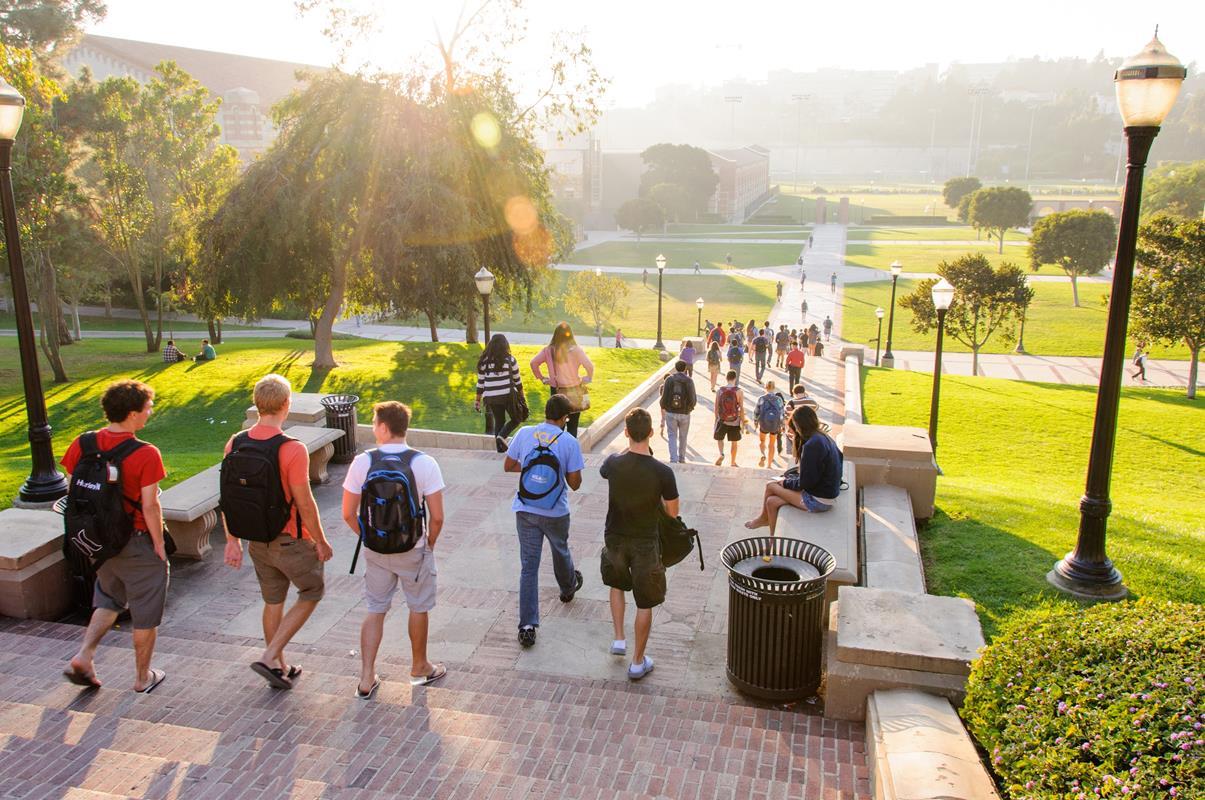 university_california_los_angeles