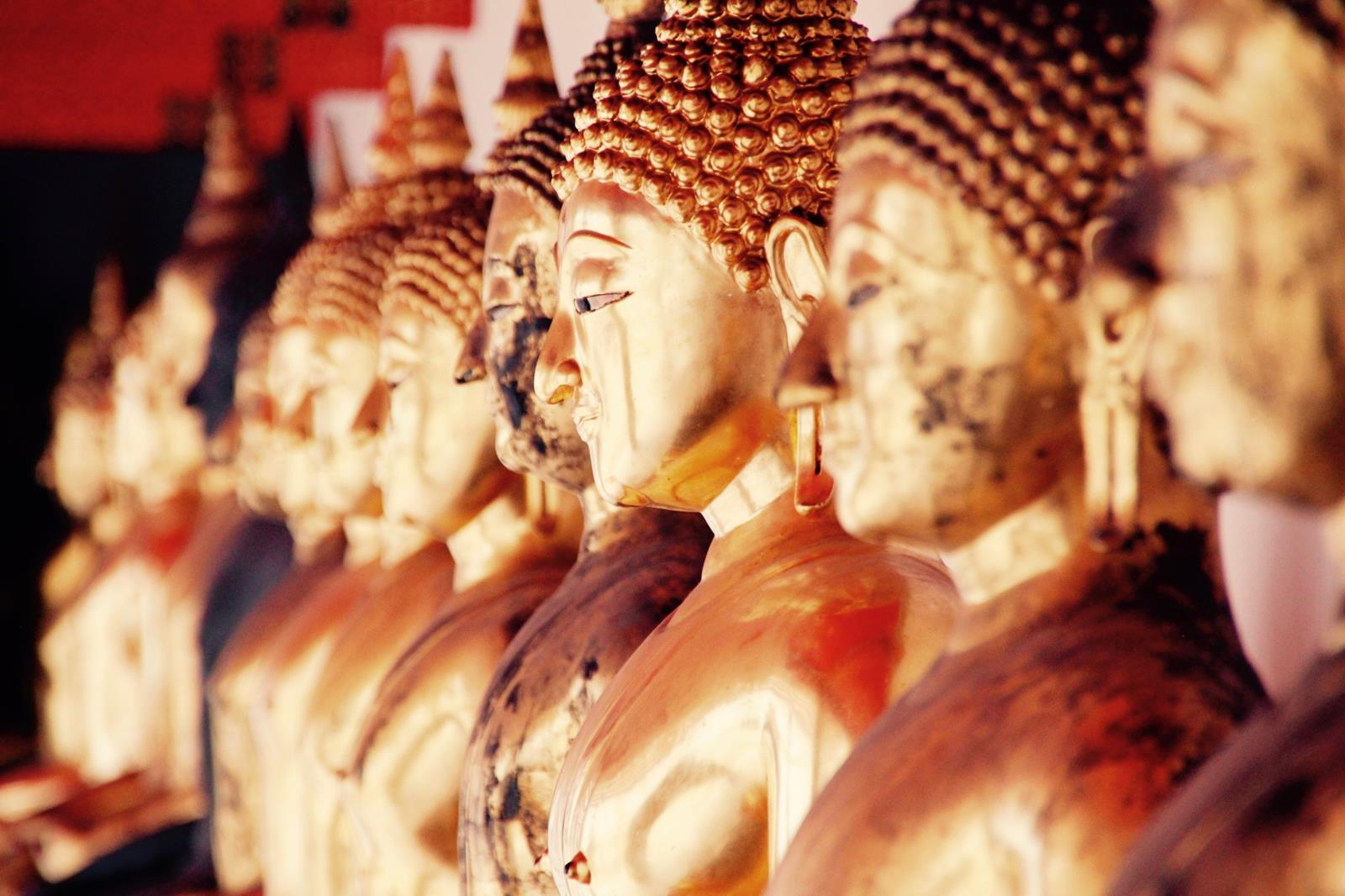4 Activities You Have to Try While Traveling Southeast Asia