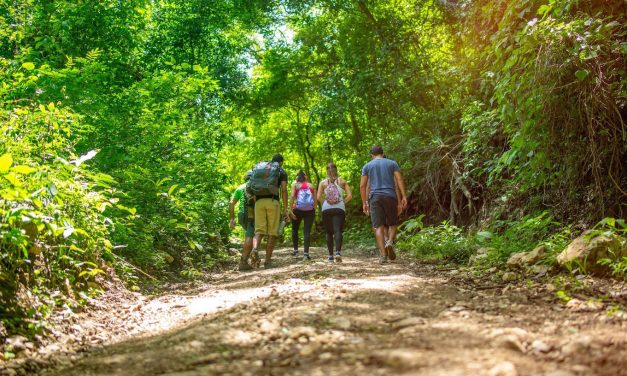 Top Student Tours of Costa Rica's Environment