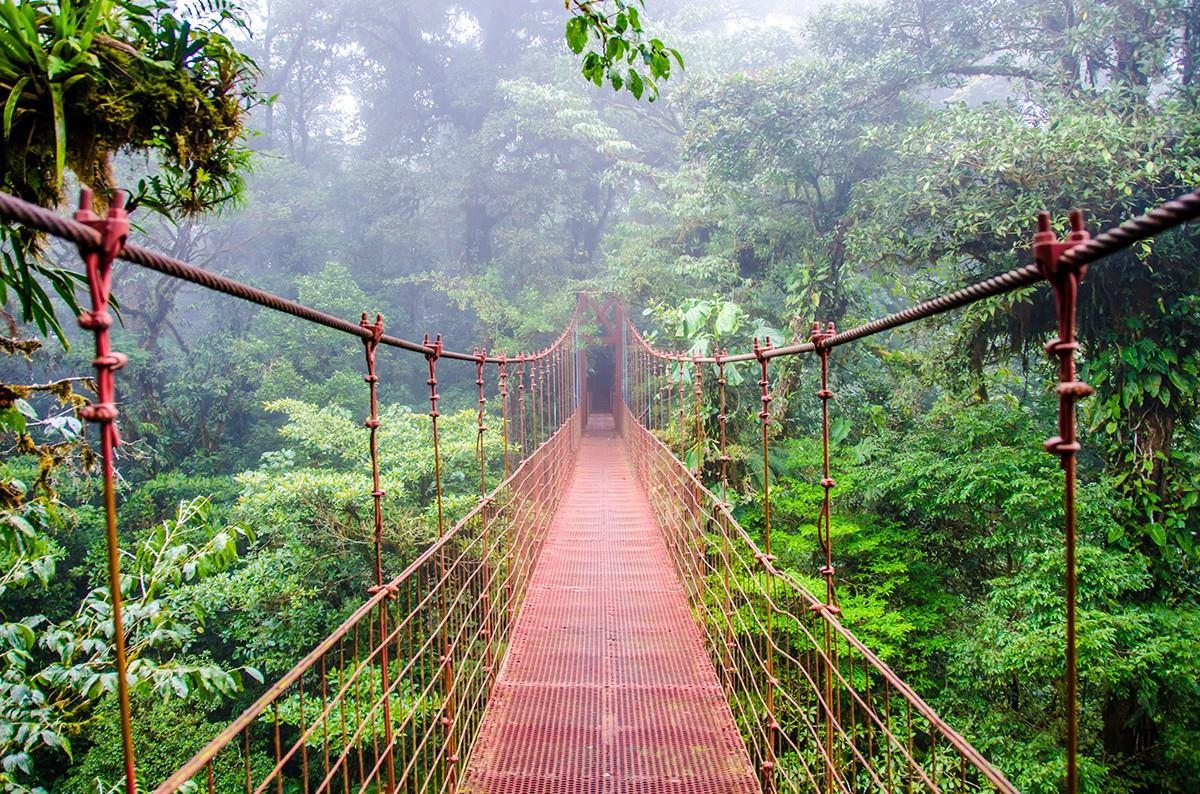 World Strides Monteverde Cloud Forest Reserve
