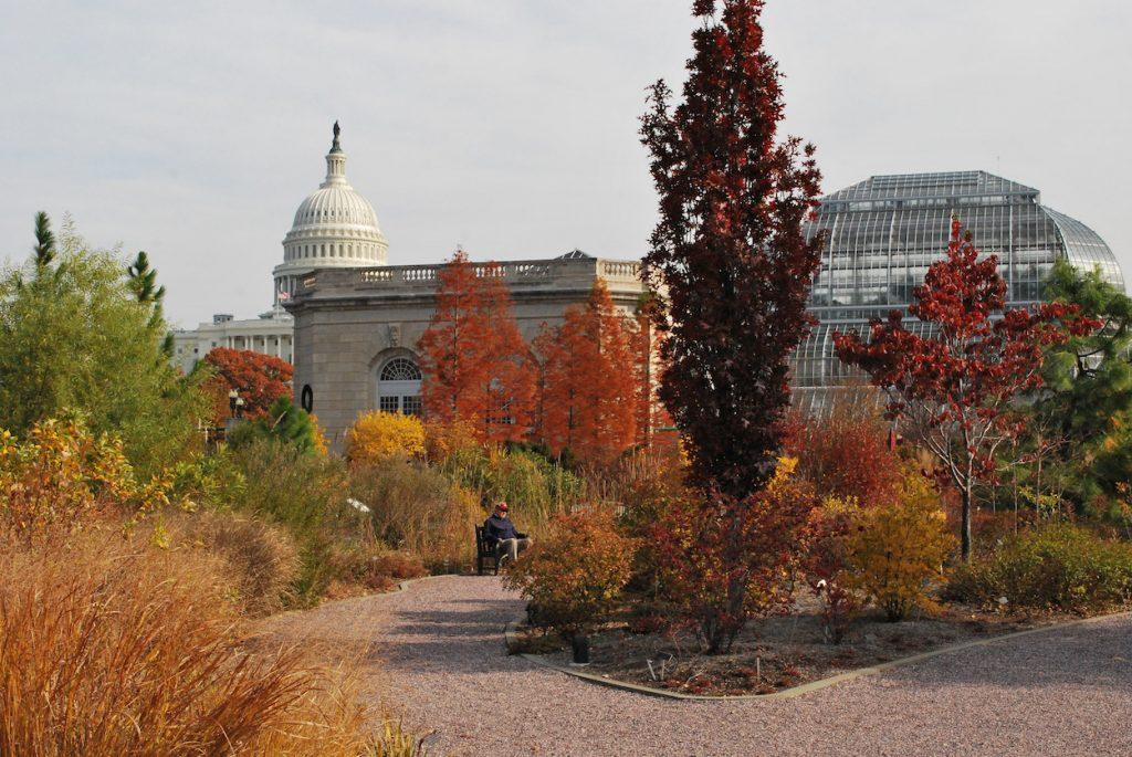 National Garden at the U.S. Botanic Garden in Fall