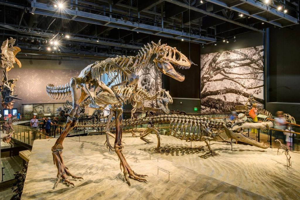 Natural History Museum, Credit Visit Utah