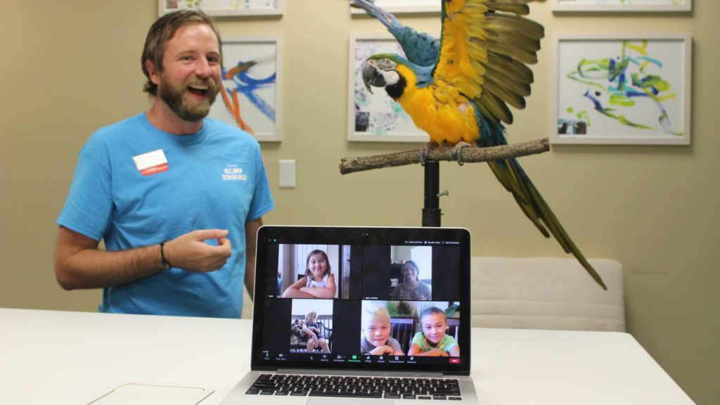 Credit: Houston Zoo - Virtual Field Trip