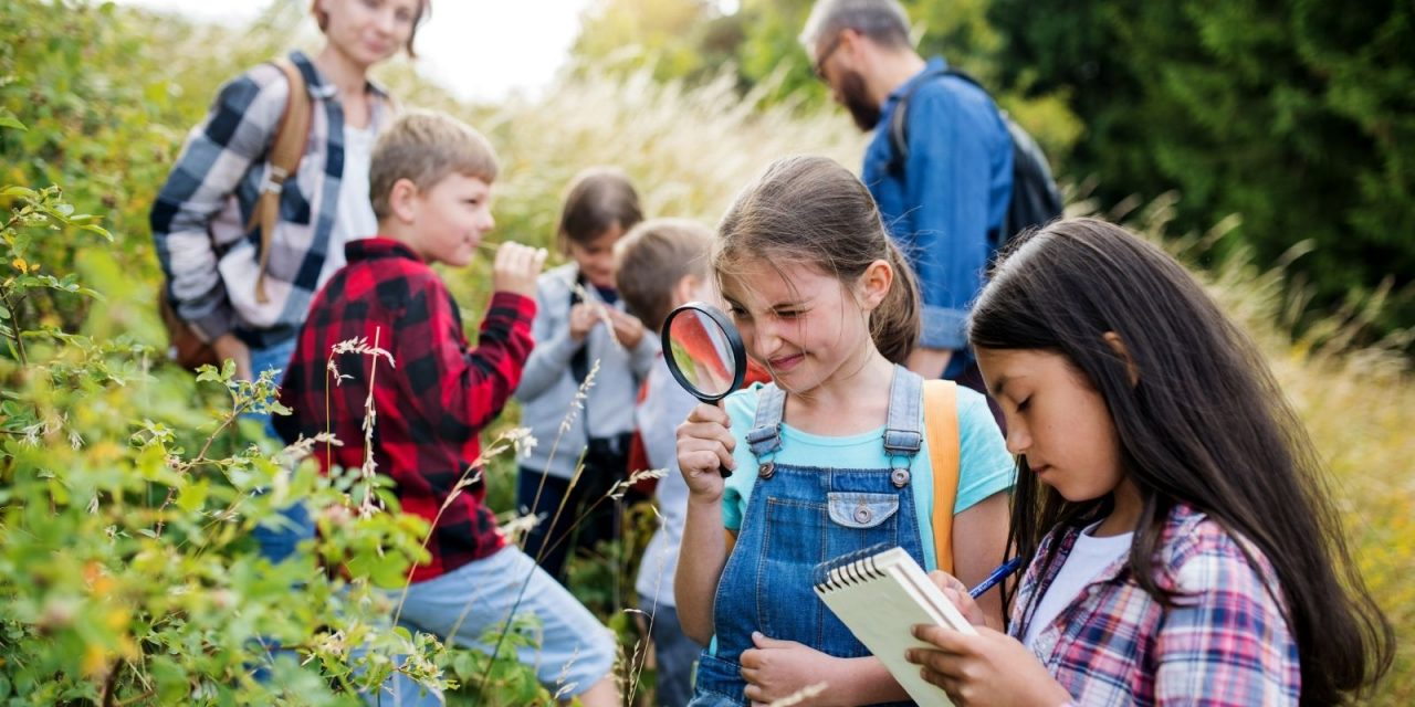 How To Plan for Future Field Trips