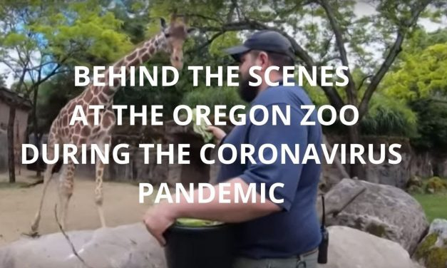 Virtually Visit These West Coast Zoos and Science Centers