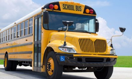 Best Tips for Orchestrating a Field Trip
