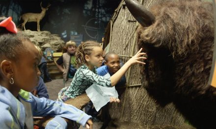 Midwestern State Park Programs STEM Students Will Love